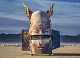Mutant Vehicle at Burning Man 2016