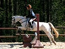 "Golden Stirrup 2007 in the hippotherapy center and pony-club ""Les Rênes de la Vie"""